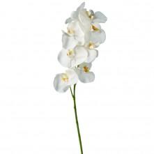 Dekor orhideja bela