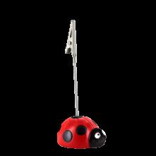 LBI - Ladybird